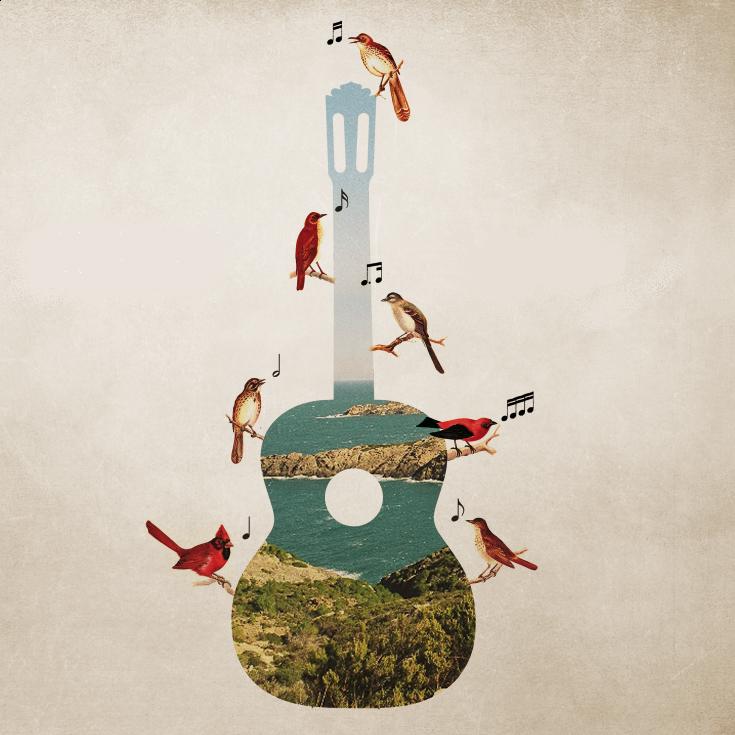 'Ad Libitum' String Quartet