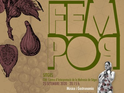 FemPop - Música contra la desigualtat de gènere