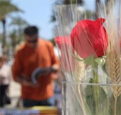 """Presentació del llibre """"Avui és Festa Major, Hoy es Fiesta Mayor, The Town Festival """""""