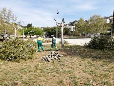 Comencen els primers treballs per a la construcció de l'escola Agnès de Sitges