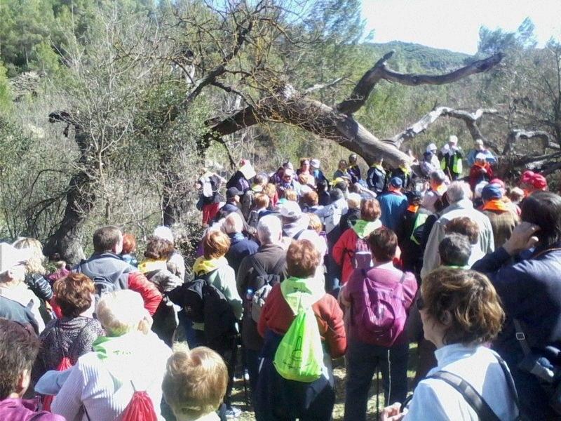 Prop de 200 persones de diferents municipis es reuniran a Sitges dijous per fer una caminada de marxa nòrdica