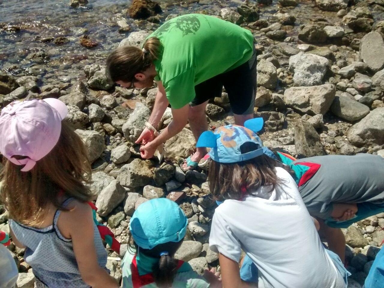 La 6a edició del Sitges Clean Up Day, una acció de neteja participativa de platges, es realitzarà el 5 de maig
