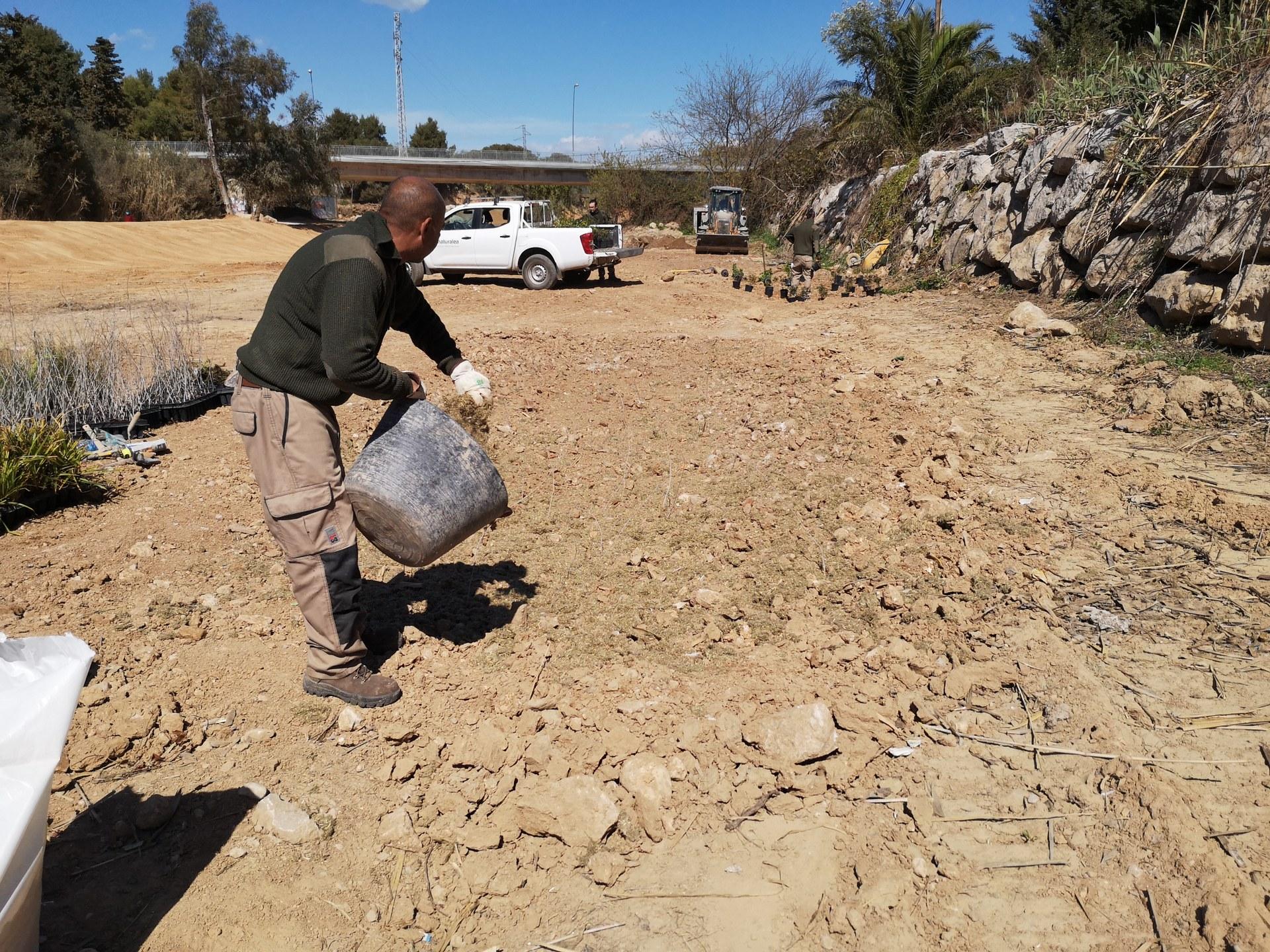 La recuperació de la Riera de Ribes, principal actuació del Dia del Medi Ambient
