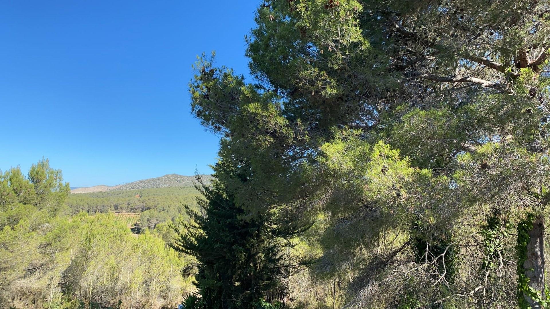 Sitges posa en marxa la campanya  de prevenció d'incendis