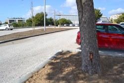 L'Ajuntament condiciona els terrenys annexes al pavelló de Pins Vens