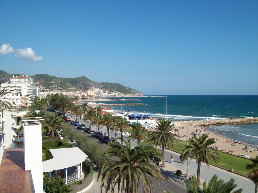 L'Ajuntament de Sitges inicia aquest dimarts el tractament amb fitosanitaris contra el morrut a les palmeres